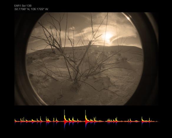 Fish Eye Landscape Score copy